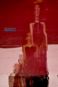 TWDiCarloCouture296cover